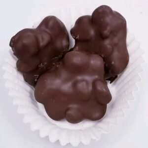 Chocolate Dipped Raisin clusters