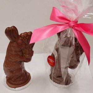 Large Semi hollow milk chocolate bunny